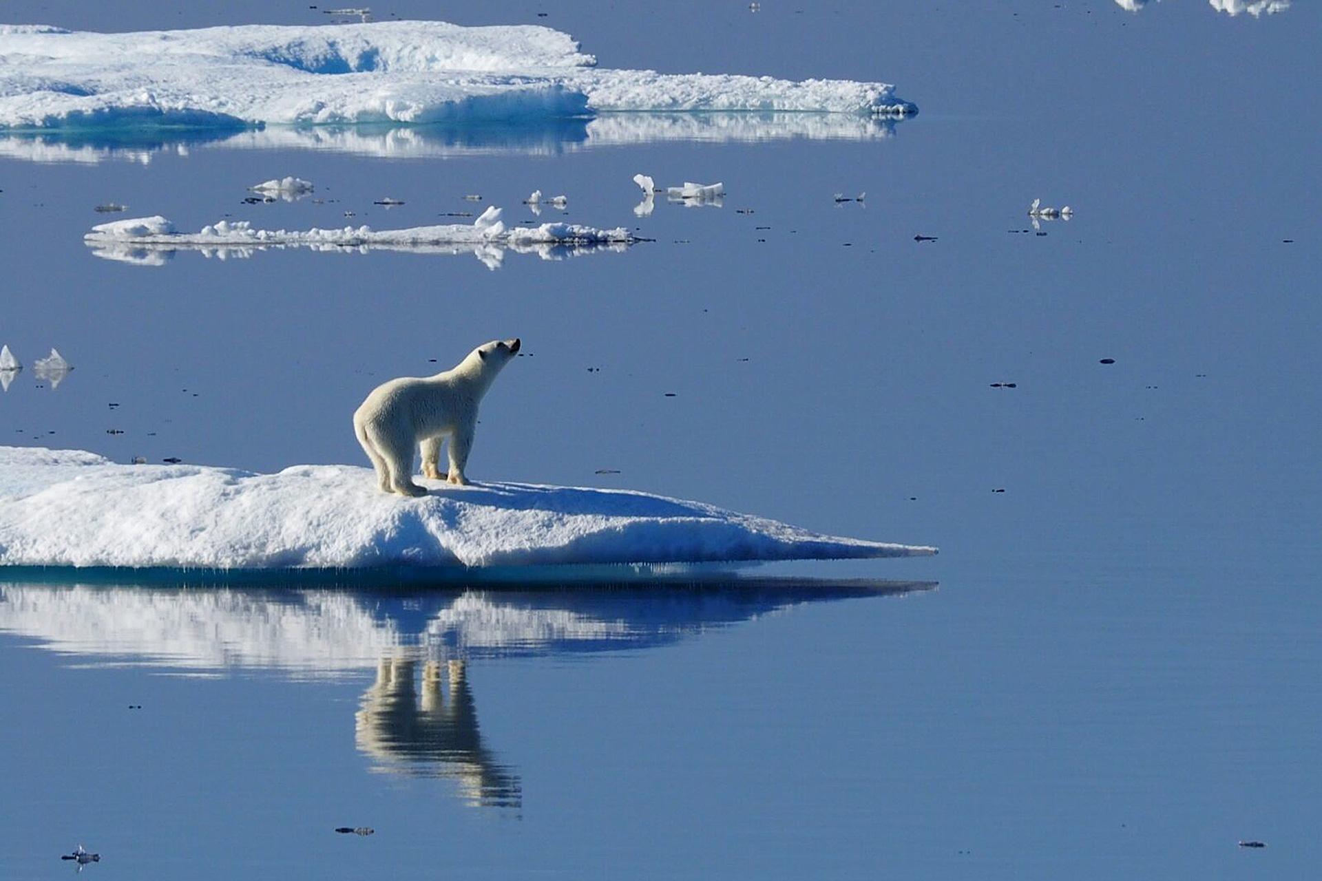 Hapag Lloyd Kreuzfahrten, Arktis